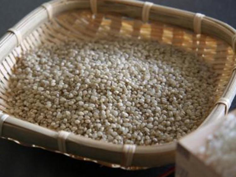青森生まれのスーパー玄米 極小粒うるち米『つぶゆき』