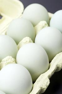 「あすなろ卵」