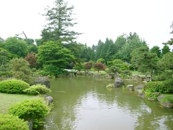 藤田記念庭園、花菖蒲が見頃です♪