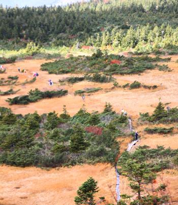 紅葉前線下山(南下)中