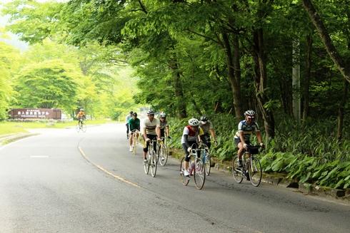 颯爽 クロモリ自転車 十和田湖・奥入瀬を駆ける
