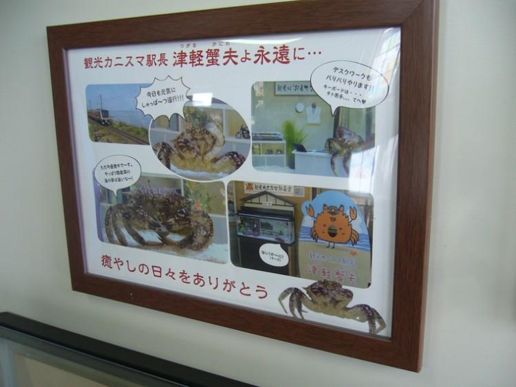 http://www.jr-morioka.com/noccha/train/asunaro/
