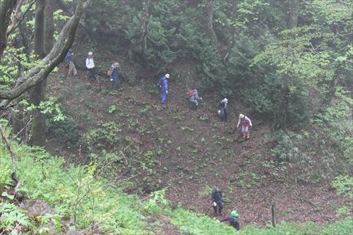 津軽の森に突如現れる鉄道跡 ~奥津軽トレイル~