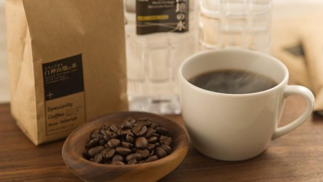 白神山地の湧き水でコーヒーを