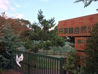 鶴の舞う街でアートな体験