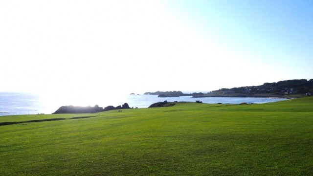 """早朝の種差海岸で最高のヒーリング""""天然芝生地で朝ヨガ"""""""