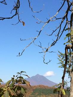 秋をたずねて 津軽峠行きバスの旅
