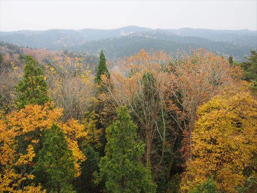 青森市内の素敵トレッキングコース!眺望山