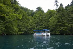 十和田湖の素敵なランチタイム6