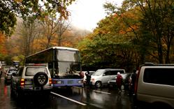 いざ紅葉の十和田湖へ!