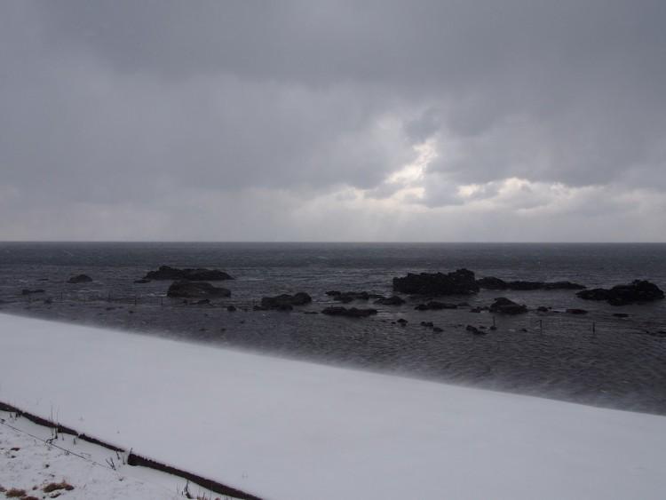 津軽海峡はしご寿司 ~極寒だから美味しい冬ネタ編~
