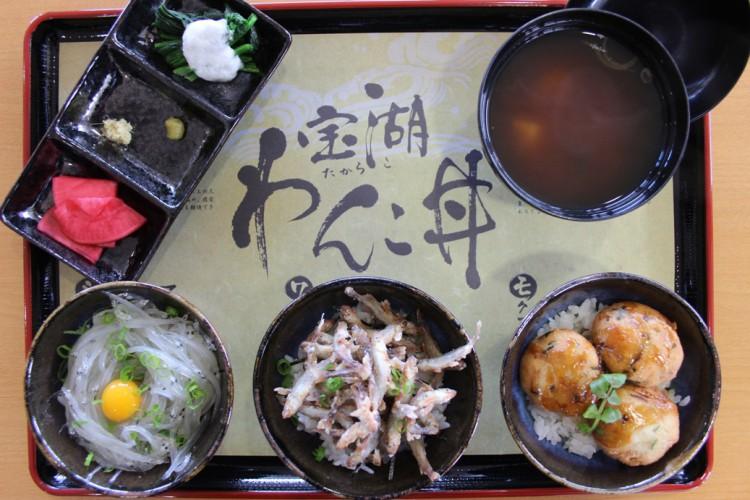 小川原湖の恵み満載!「宝湖(たからこ)わんこ丼」デビュー!