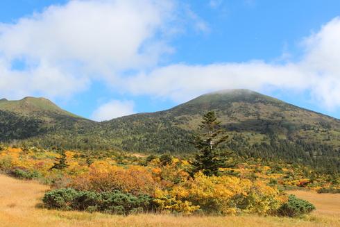 秋紅葉の八甲田山
