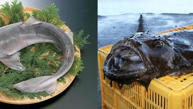 丸の内で堪能する青森の魚食文化
