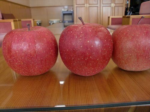 青森を旅だったりんごは今!