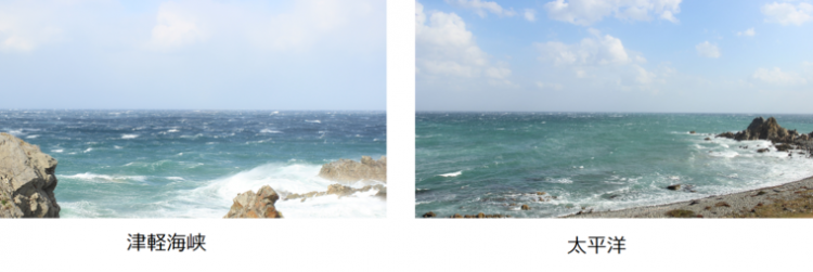 下北半島の突端「尻屋崎」と「寒立馬」
