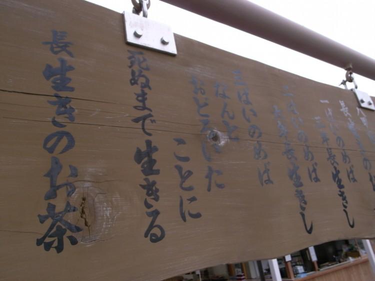 八甲田・十和田を自転車で駆け抜ける ~ 八甲田グランフォンド開催! ~