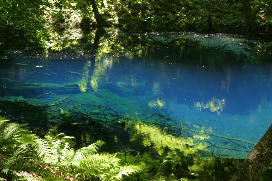 自然が魅せる 奇跡の青!