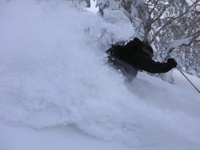 八甲田スキー