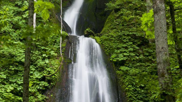 奥入瀬渓流雲井の滝