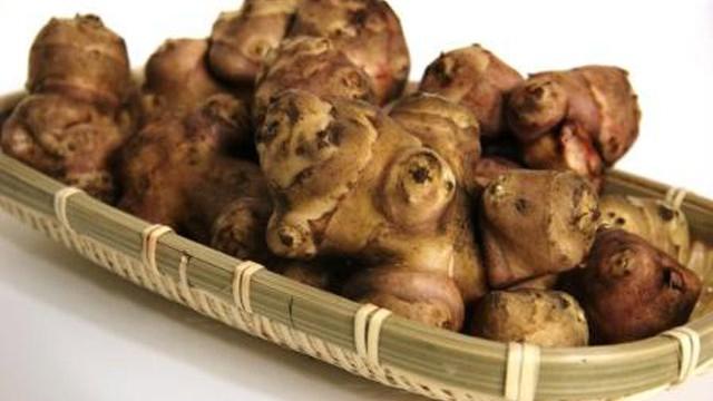 """""""カライモ""""と呼ばれる懐かしいイモ 「キクイモ」"""