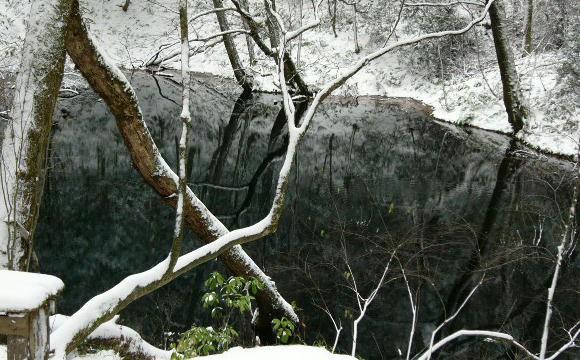 冬も『十二湖』