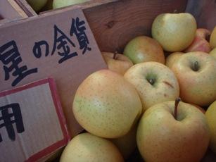 りんごのスーパー新品種「星の金貨」
