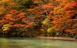 いざ紅葉の十和田湖へ!2