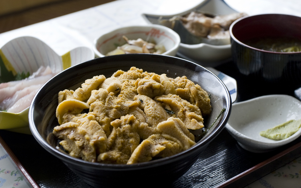 仏ヶ浦ドライブインの「ウニ丼」