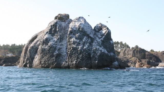 欲張り!! 種差海岸トレッキングと漁船と漁師鍋ツアー