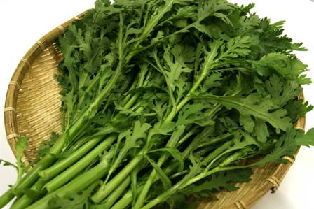 津軽の冬の野菜 「冬陽しゅんぎく」
